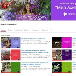 mir-ahimenesov-youtube